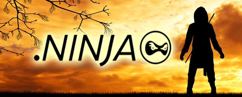 ninja_800X320_notext
