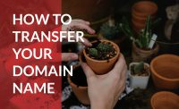 Learn how to transfer your domain name to a new registrar.
