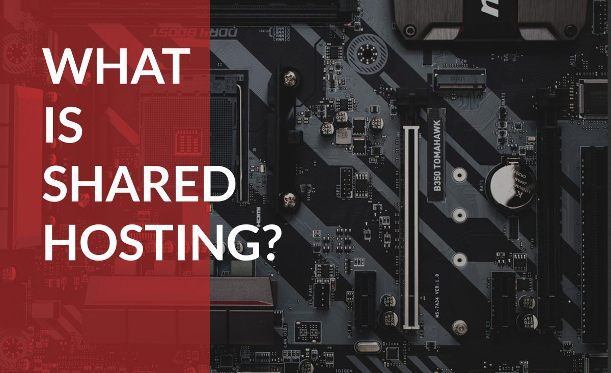 Find out what shared hosting is and how it can help your business.