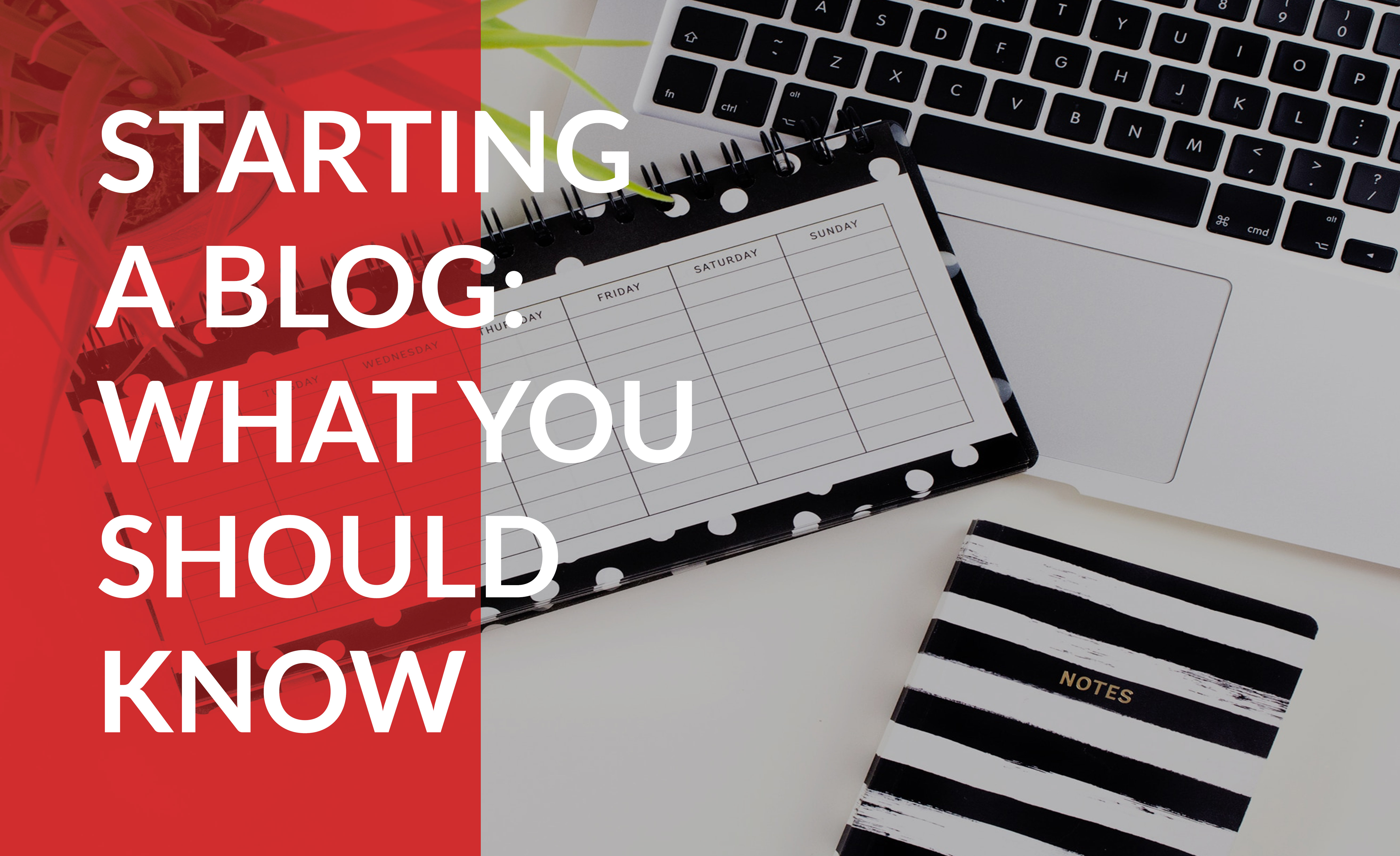 Starting a blog: What you should know
